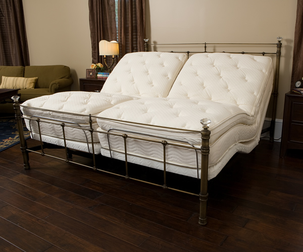 GoldenRest Elite Dual King Bed with Bamboo Z-Mat Mattresses