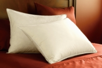 Pacific Coast® Eurofeather™ Pillow - Discontinued 10/17